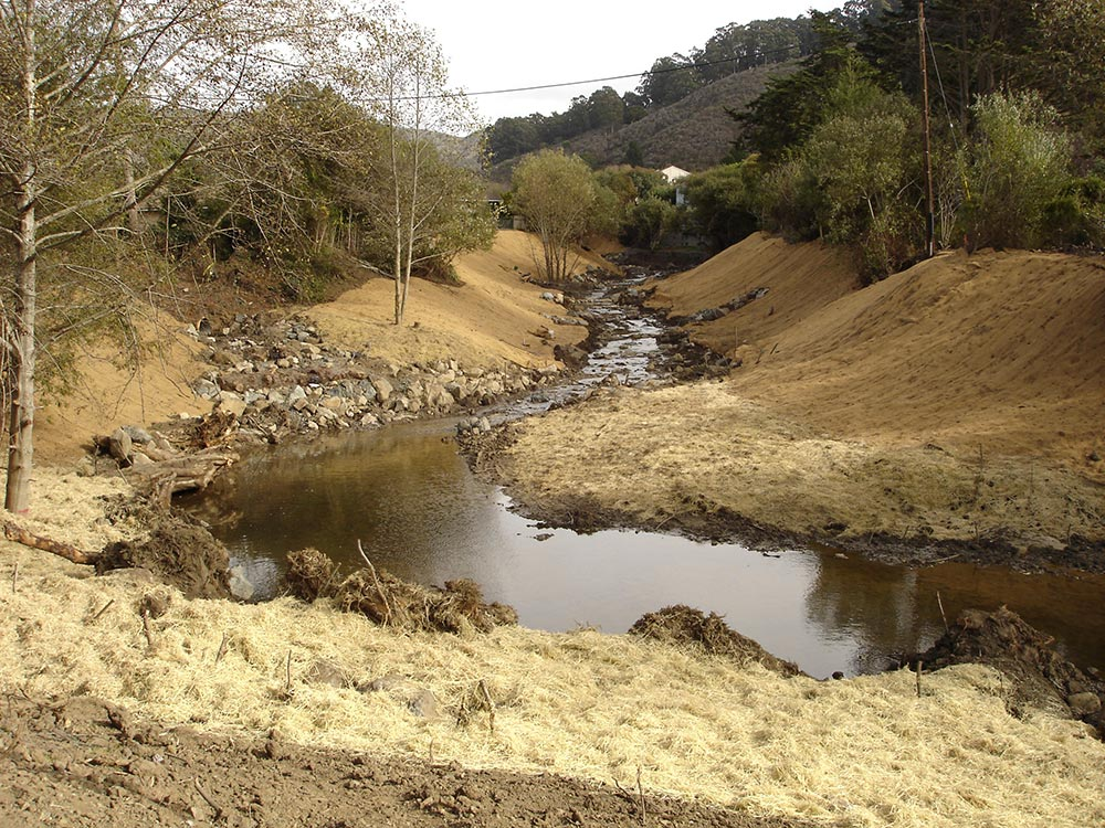 San Pedro Creek and Pacifica State Beach habitat restoration project